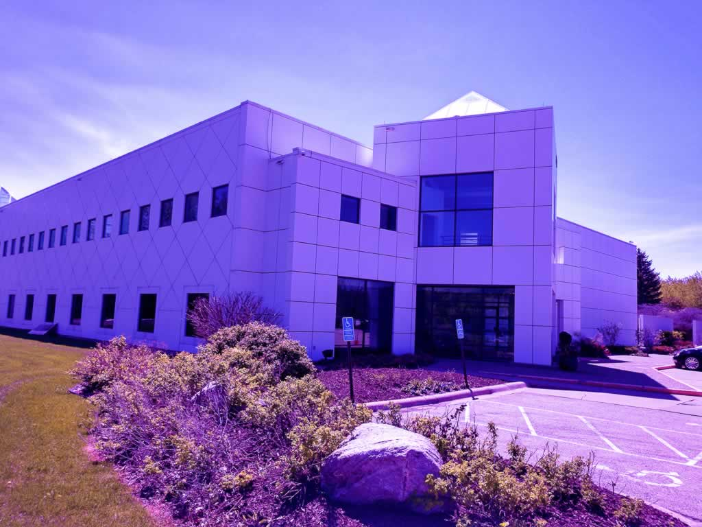 minneapolis paisley park purple in princes honor